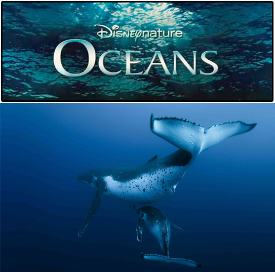 "Disneynature's ""Oceans"" - a review"
