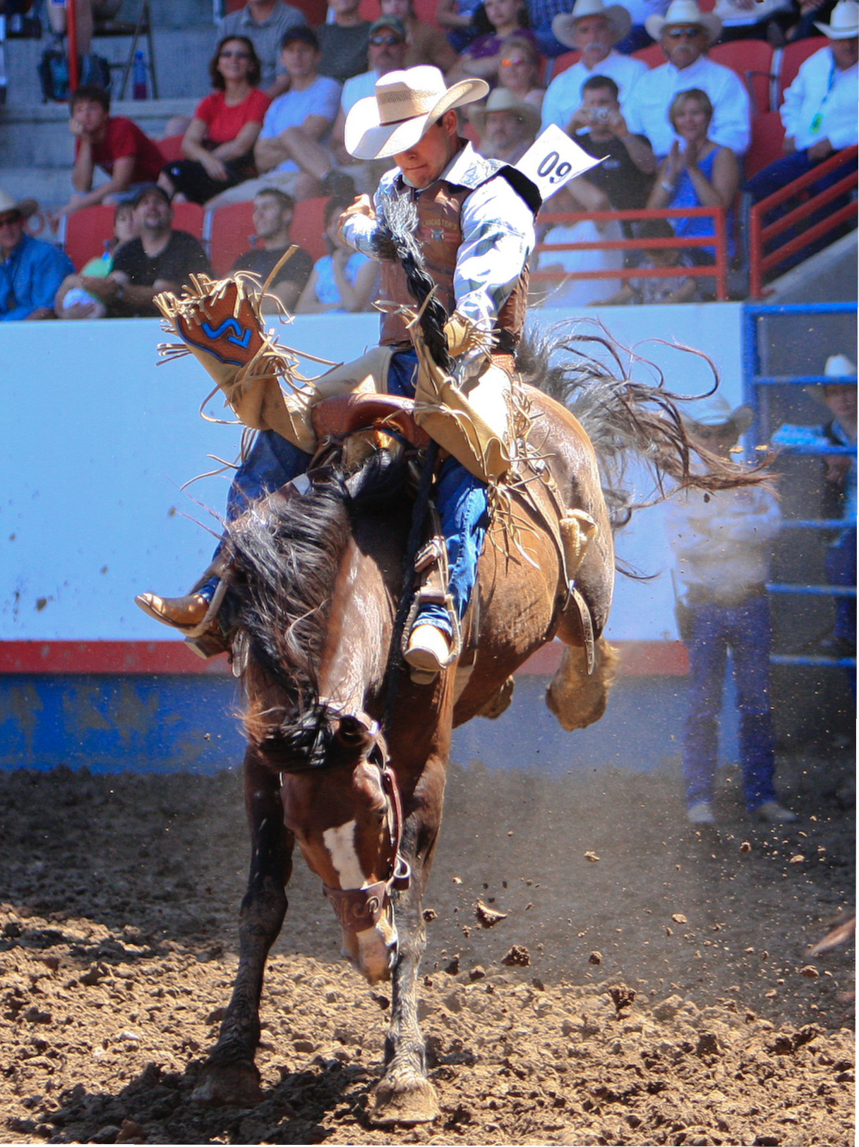 Get Your Kicks At The Greeley Stampede Heiditown