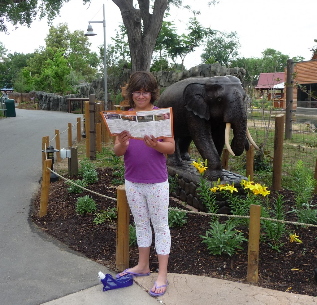 """A Trip To Asia At The Denver Zoo """""""" Toyota Elephant"""