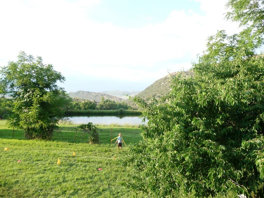 green green rolling hills at biergarten festival in colorado