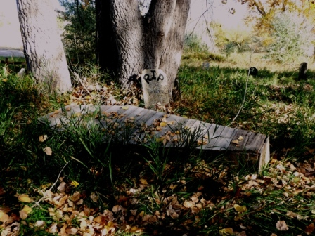 Halloween creepy walk casket