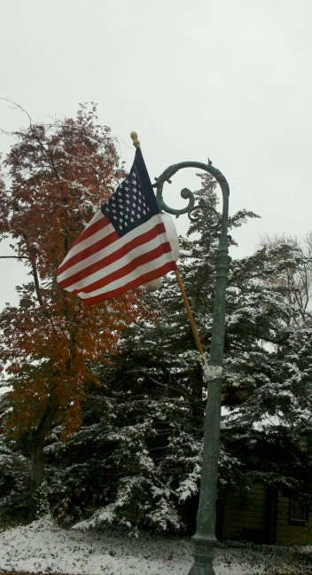 Veterans Day Loveland lamp post