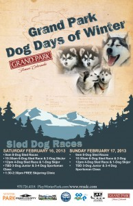Grand Park Dog Days of Winter 2013 poster