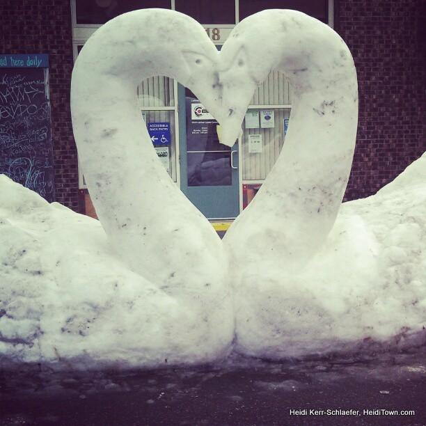 snow swans HeidiTown.com 2013