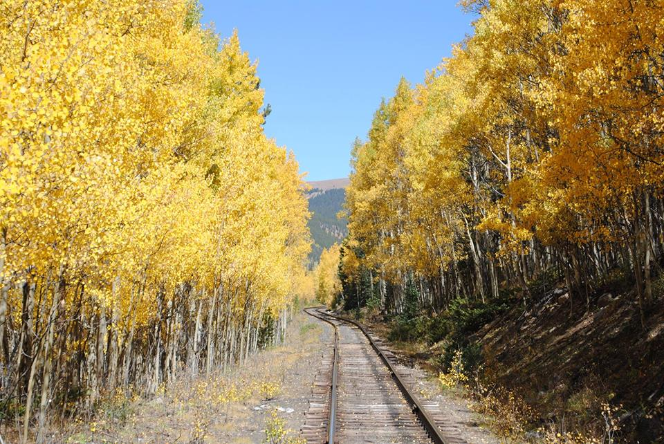 Viewing fall colors via a Colorado train ride