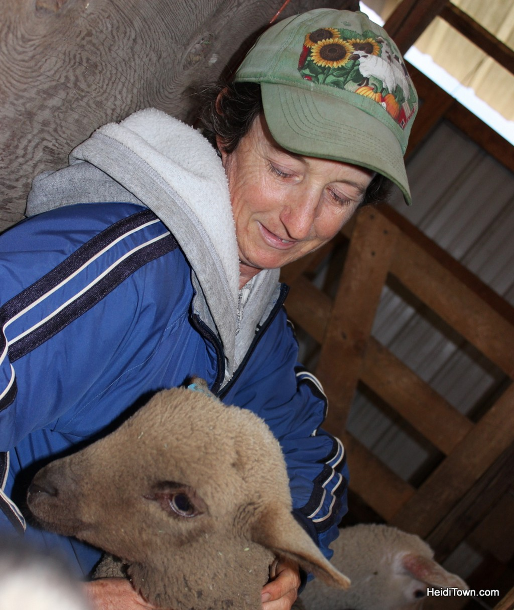 Lynn with one of her lambs during Lamb Lovin' at The Living Farm in Paonia, Colorado. HeidiTown.com