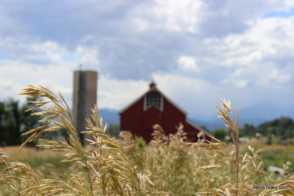 The Agricultural Heritage Center in Longmont, Colorado. HeidiTown (4)