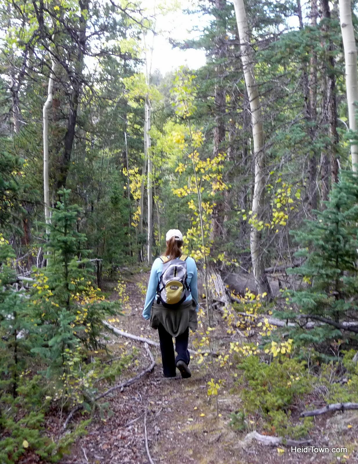 Hiking at Mt. School Marm Colorado. HeidiTown.com