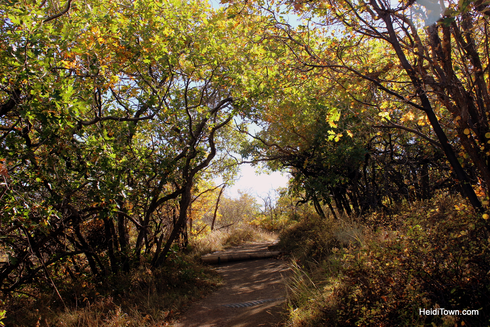 Hiking at Black Canyon of the Gunnison National Park. HeidiTown (2)