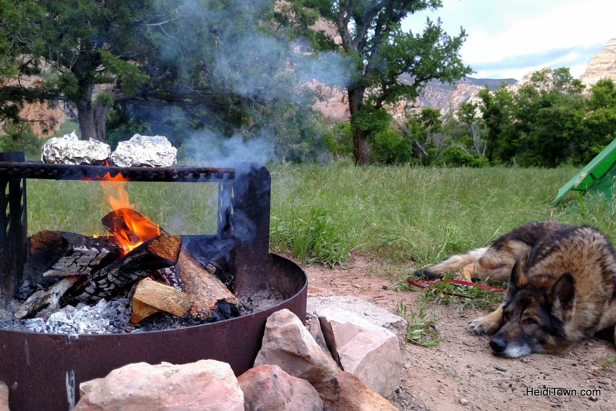 Camping at Echo Park in Dinosaur National Monument. The dog can smell the sausage. HeidiTown.com