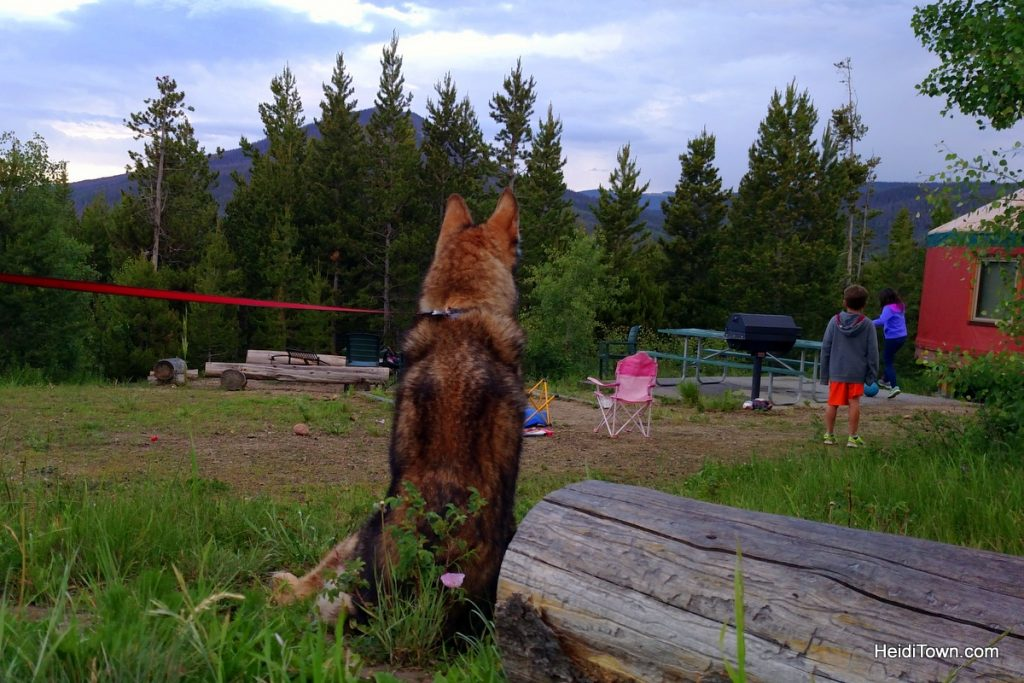 A stay at Yurt Village at Snow Mountain Ranch. xena watching kids. HeidiTown.com