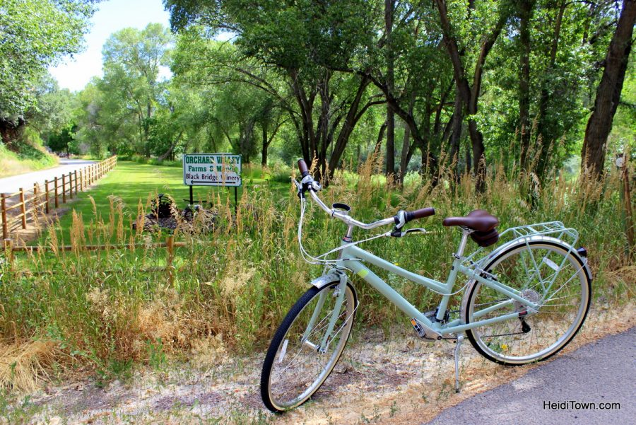 Last minute Colorado summer trip ideas - go biking. HeidiTown.com