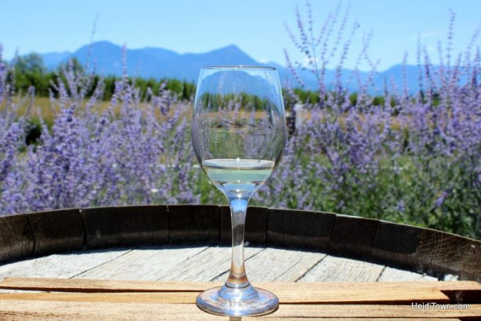 featured-festival-mountain-harvest-festival-paonia-colorado-wine-glass