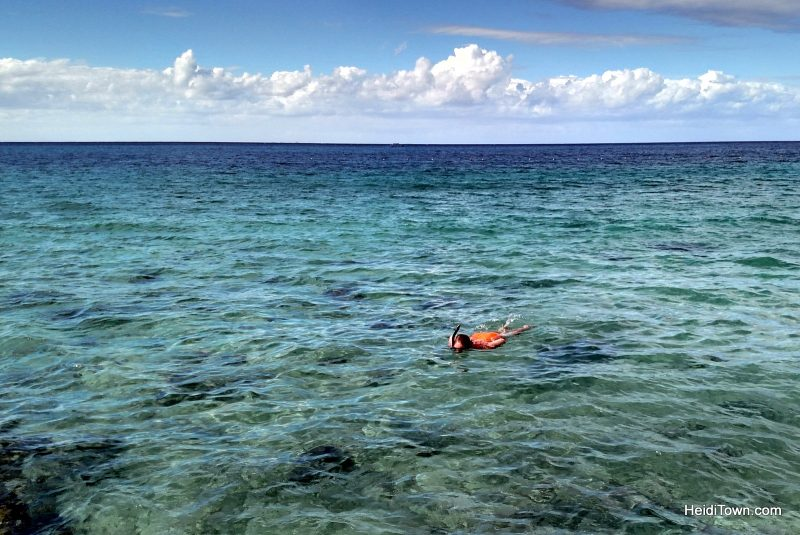 11-things-you-should-know-before-visiting-cozumel-mexico-snorkeling-shot