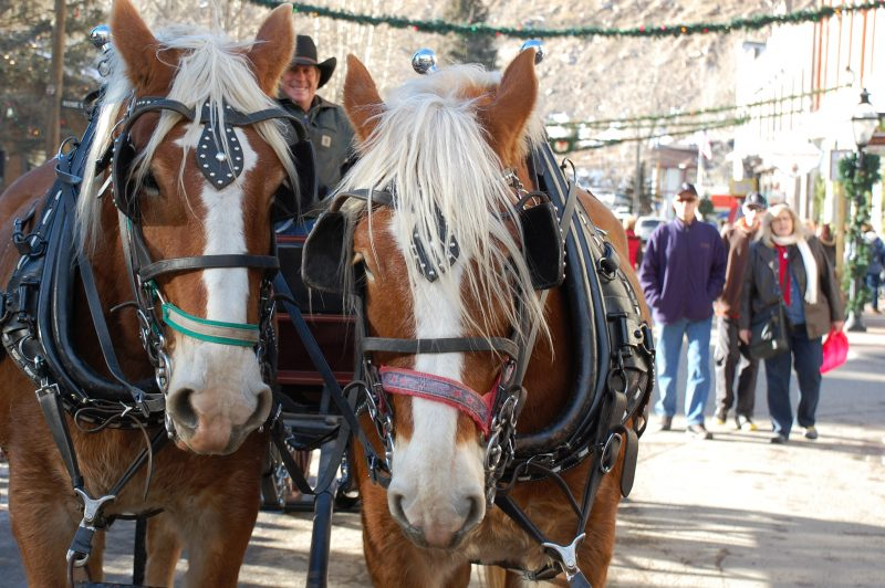 christmasmarket_horses-courtesy-visit-clear-creek-county