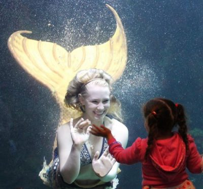 Hate the Snow on HeidiTown.com, Mystic Mermaids; Photo credit by Luis Torres