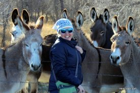 Mayor of HeidiTown Announces Annexation. Heidi & the Saratoga donkeys