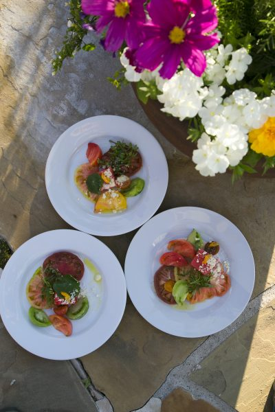 Crested Butte Center For The Arts Wine and Food Festival 2016. (Photo/Nathan Bilow)
