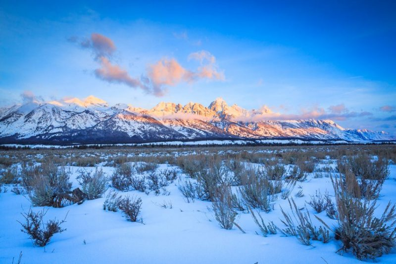 A Wildlife Tour With Jackson Hole Eco Tour Adventures, photo credit Josh Metten Photography