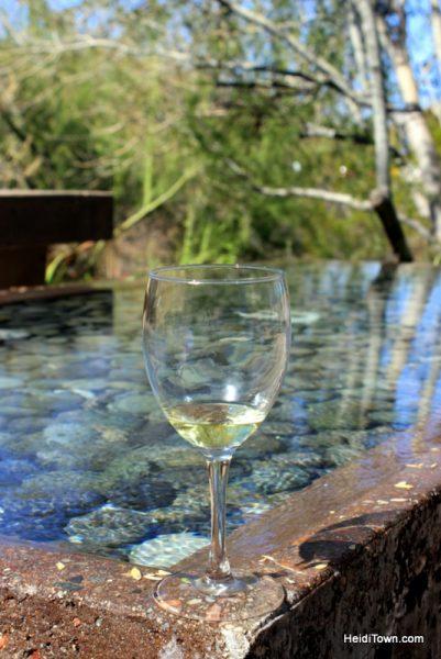 Visit Another Planet Arizona's Desert Botanical Garden. Corks & Catus wine festival. HeidiTown.com