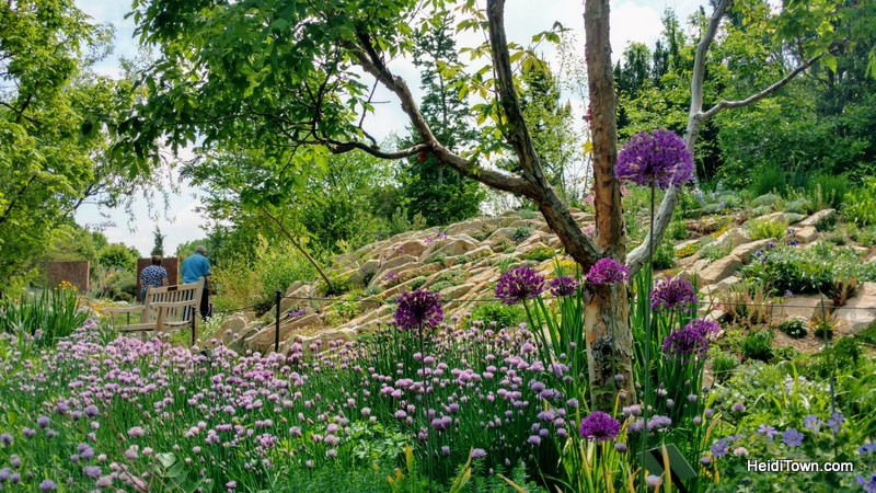 5 Picture Perfect Colorado Summer Towns, Denver Botanic Gardens, HeidiTown.com