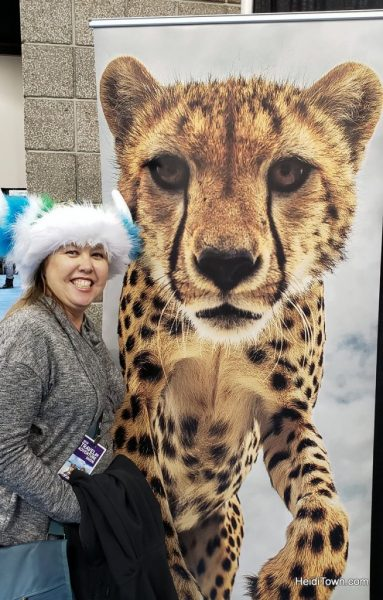 Denver's Travel & Adventure Show That's a Wrap (5)