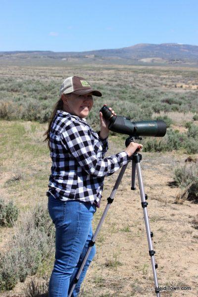 The Wild Horses of Northwest Colorado Sand Wash Basin HeidiTown (8)