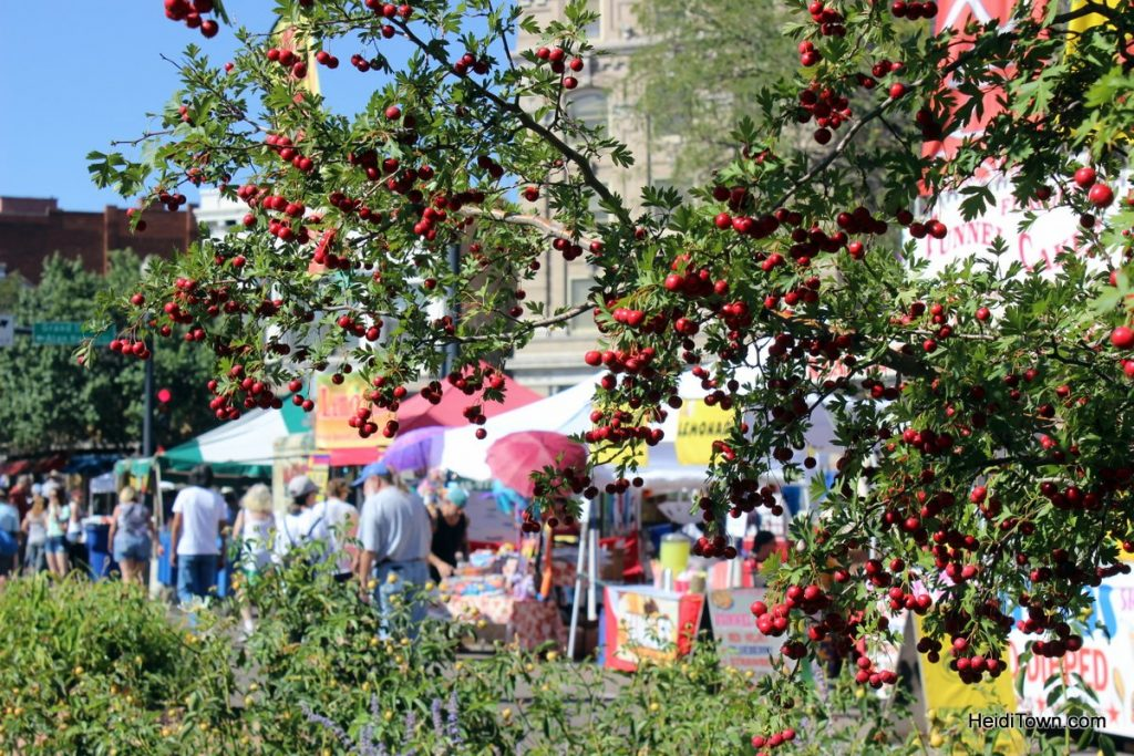 Fall in Love with Pueblo, Colorado, Part One Chile Festival. HeidiTown (6)
