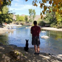 Salida, Colorado is for the Dogs Dog-Friendly Spots Around Town. HeidiTown (15)