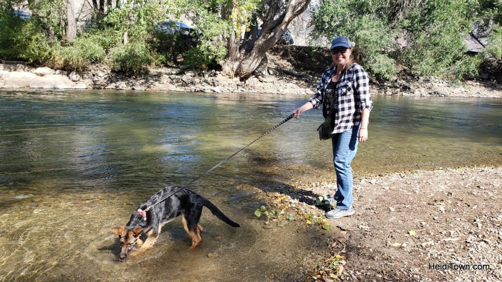 Salida, Colorado is for the Dogs Dog-Friendly Spots Around Town. HeidiTown (3)