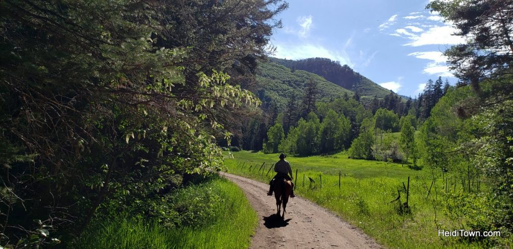 Trail Ride to the Top of the World with Action Adventures in Ouray. HeidiTown (2)