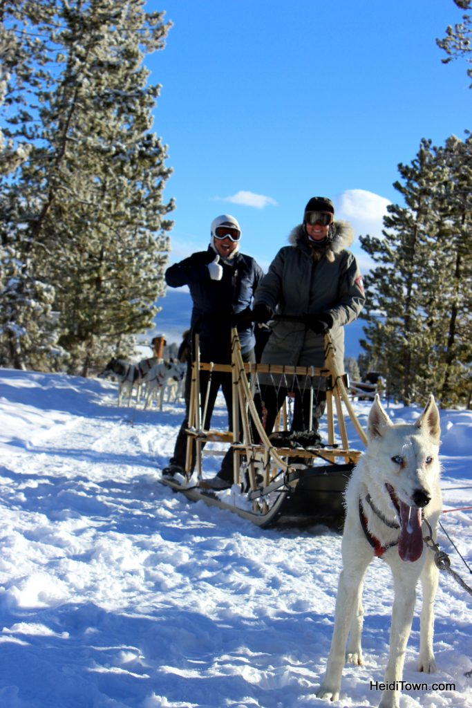 The Mayor's Travel Memories from the Road (Dog Sledding!) Snow Mountain Ranch. HeidiTown